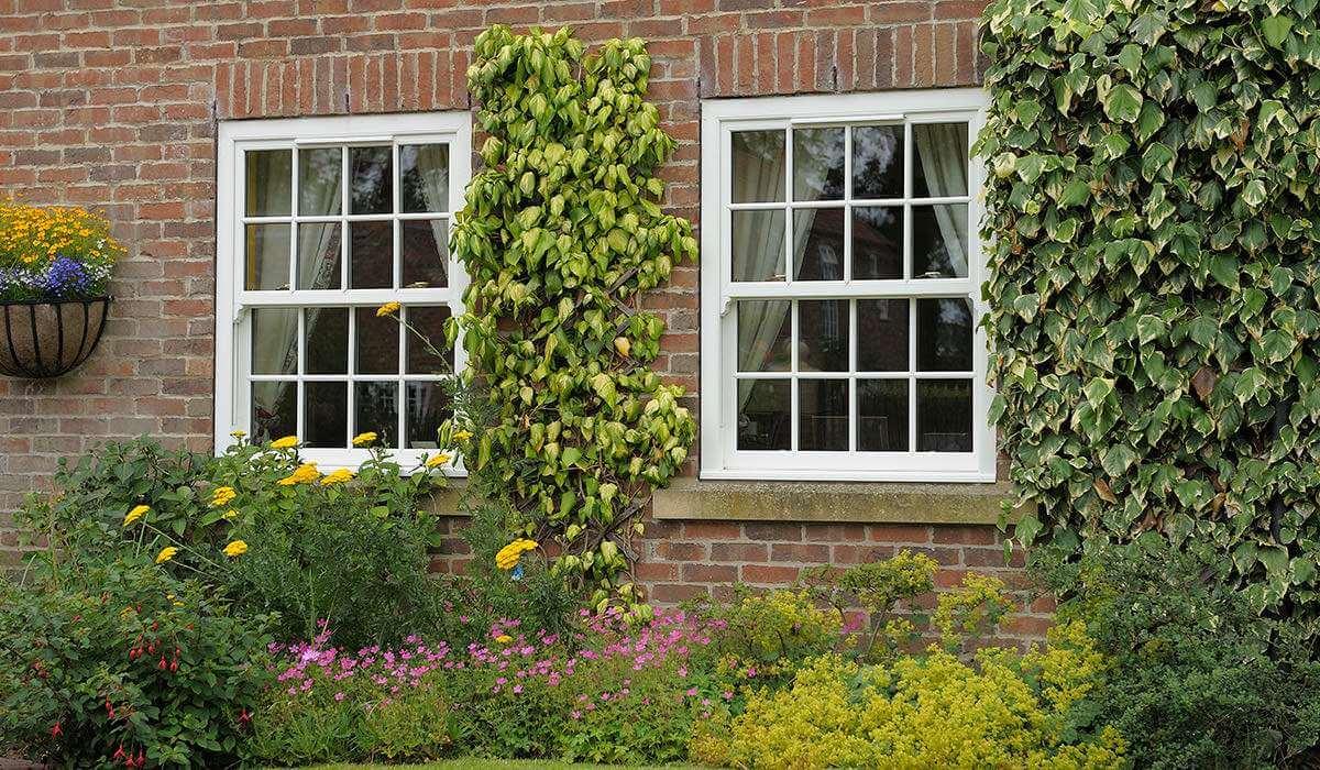Window Sash Replacement Sevenoaks